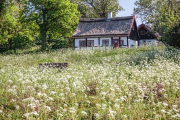 Idyllisches Ferienhaus mit Frühlingswiese