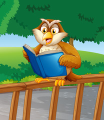 An owl reading a blue book