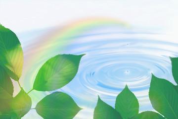 虹と葉と水滴