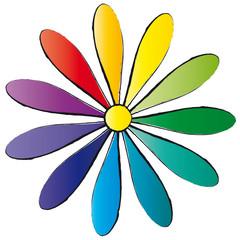 Bunte Blume - Margerite - Regenbogenfarben
