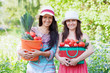 happy women with  harvest in garden