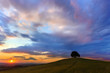 Sunset scene in Tuscan hills