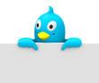 Der kleine Vogel