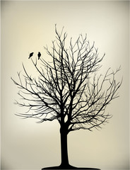 2 birds on tree