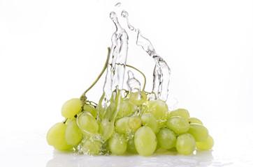 uva da tavola splash