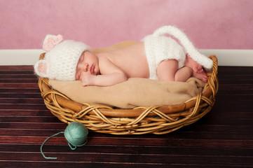 Newborn Baby in Kitten Costume