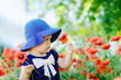 toddler gathering poppies