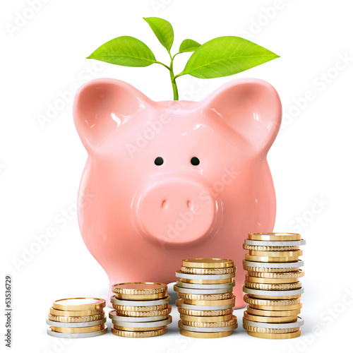 Piggy bank with plant and coin stacks