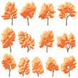 Set of deciduous trees in autumn.