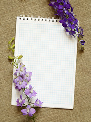 Notebook and delphinium