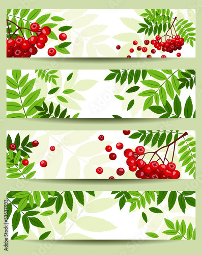 Four vector banners with rowan branches (468x120px).