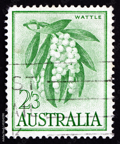 Postage stamp Australia 1959 Golden Wattle, Tree