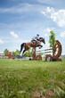springreiten sportpferde