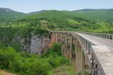 bridge over Tara river in Montenegro poster