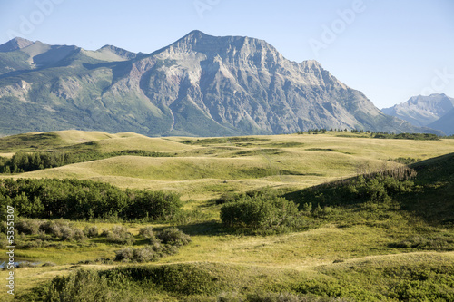 Field view with mountain background in national park
