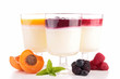 isolated panna cotta