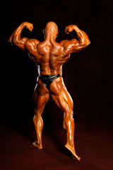 The bodybuilders back