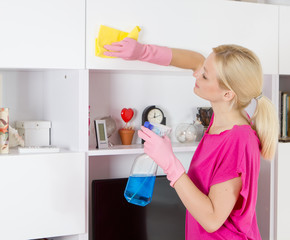 housewife cleaning home