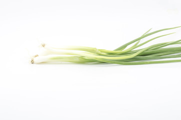 spring onion isolated on white