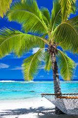 Empty hammock under palm tree on the beach
