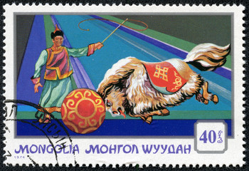 stamp shows performing yak pushing  ball with  circus trainer