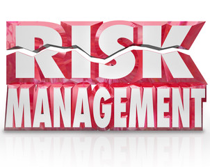 Risk Management 3d Words Reducing Danger Minimize Liability
