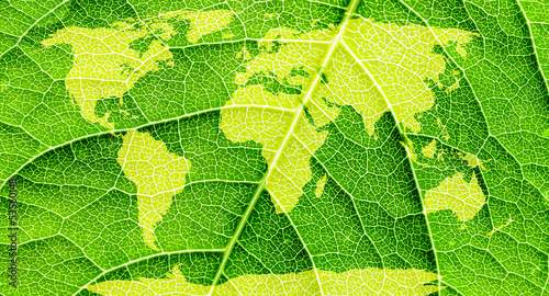 World map, continents in green leaf background.