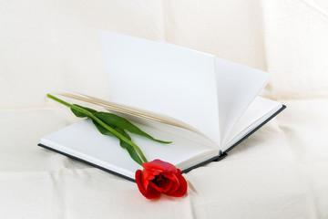 tulip flower book