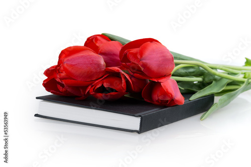 tulip flower book