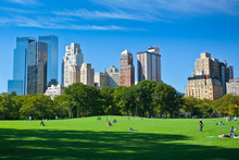Papier Peint - Meadow - Central Park - New York