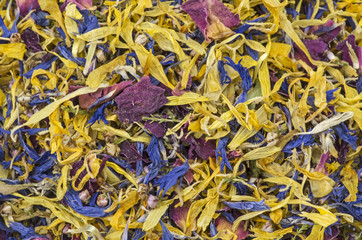 Essbare Blüten - Nahaufnahme