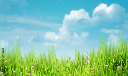 Fototapeten,schön,blau,hell,wolken