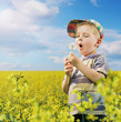Colorful picture of young boy on the meadow