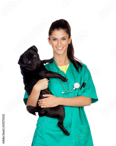 Brunette vet with a pug dog