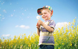 Fototapety Colorful picture of child playing dandelion