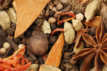 Variety of raw Authentic Indian Spices