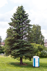 Portable toilet standing near a tree