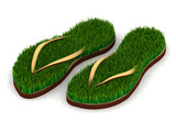 two sandals with green grass