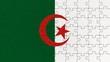 Algerian National Flag