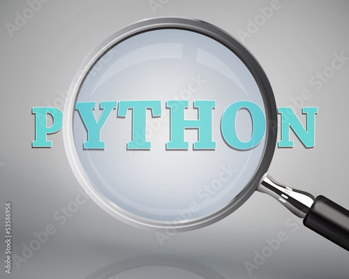 Magnifying glass showing python word