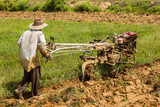 Soil preparation for planting rice