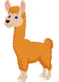 Fototapety Llama cartoon