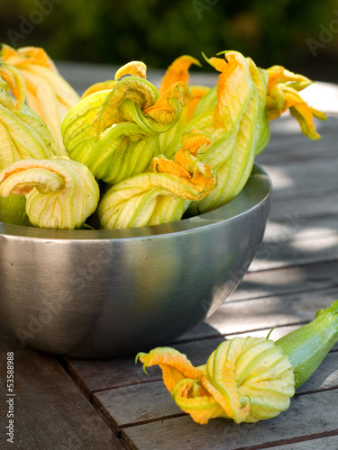courgettes or zucchini with flowers