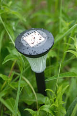 Solar power lantern with rain drops on top in green grass