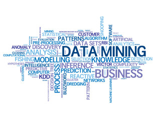 DATA MINING Tag Cloud (statistics business risk data)