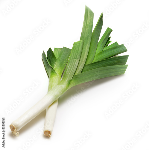 two leeks on white.