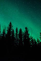 Aurora Borealis (Northern lights) in Sweden