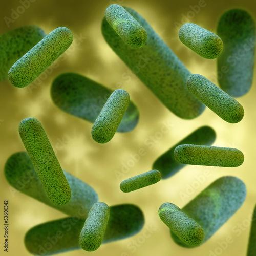 Bakterien - 3D Render - 53600342