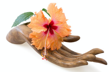 Orange and pink hibiscus flower on wooden hand statuette