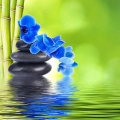 orquídea con piedras y bambú reflejada